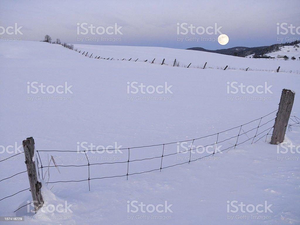 Snowy Moonlit Scenic royalty-free stock photo