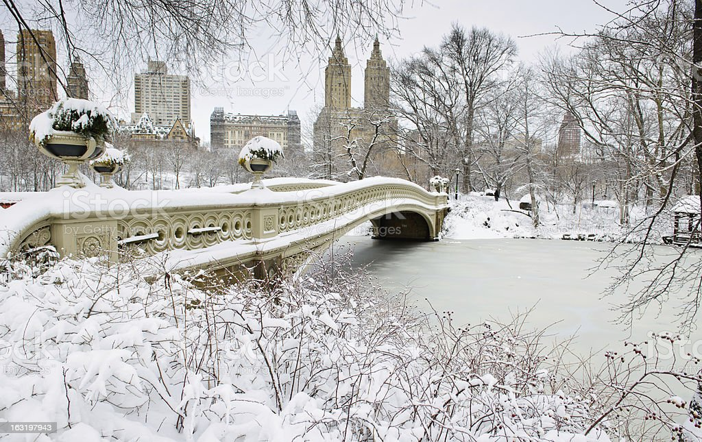Snowy morning in Central Park royalty-free stock photo