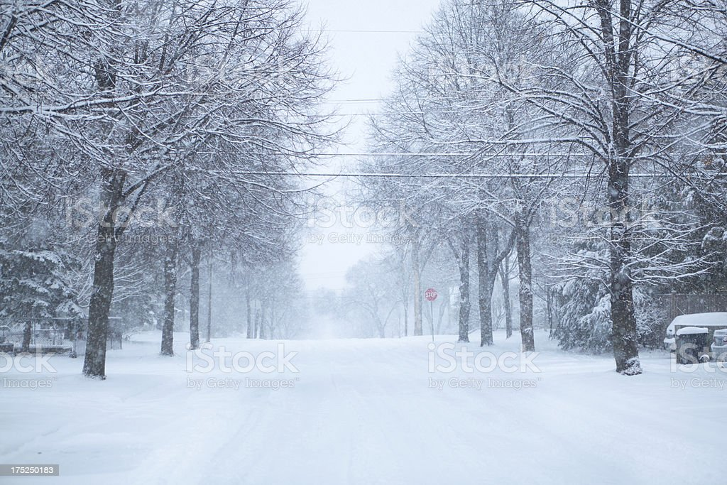 Snowy Morning in Upper Midwest of USA stock photo