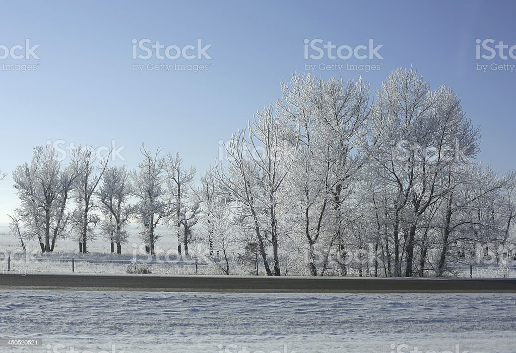 Snowy Morning on Trans-Canada Highway in Southern Alberta stock photo