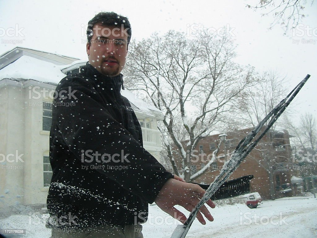 Snowy Morning stock photo