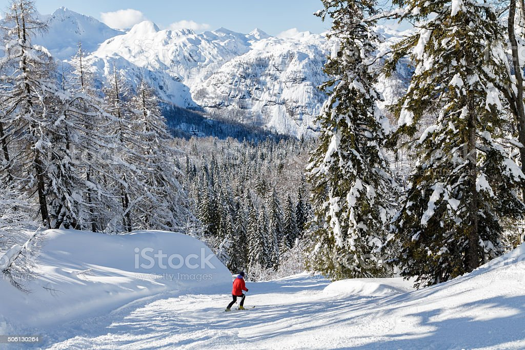 Snowy mountain landscape with the Julian Alps stock photo