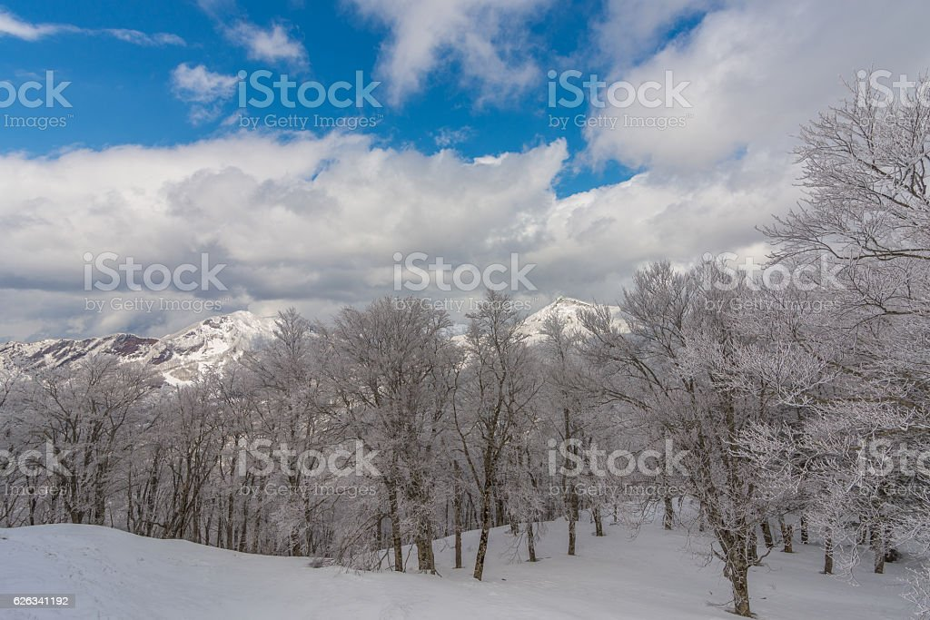 Snowy Mountains landscape against clear sky,Japan stock photo