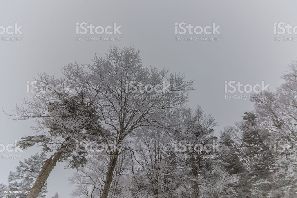 Snowy Mountains landscape ,Japan stock photo