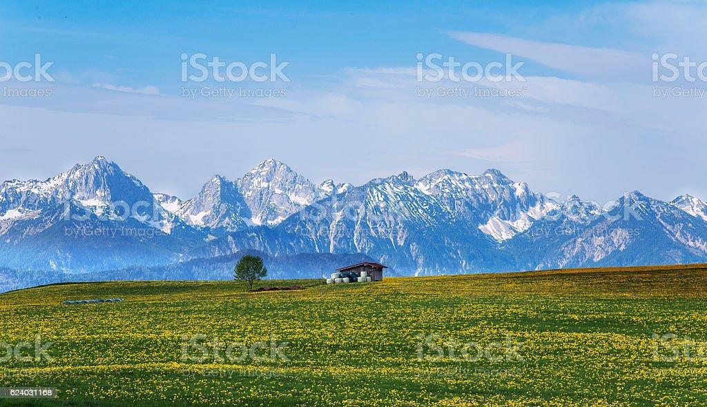 Snowy Mountains spring stock photo