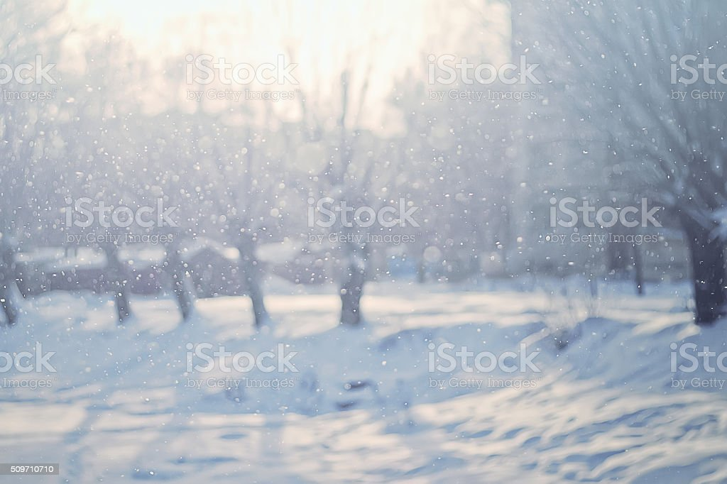 Snowy nature winter background stock photo