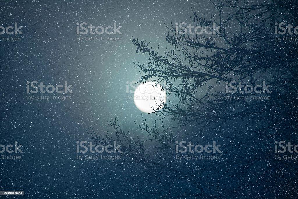 Snowy night stock photo