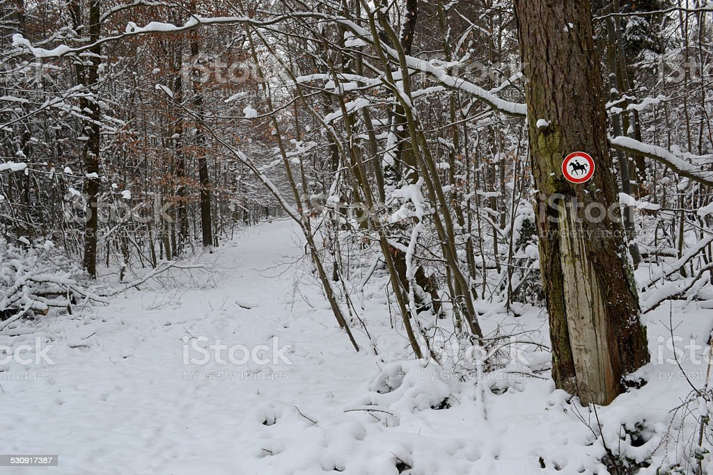 Snowy path for horses stock photo