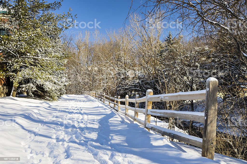 Snowy Path royalty-free stock photo