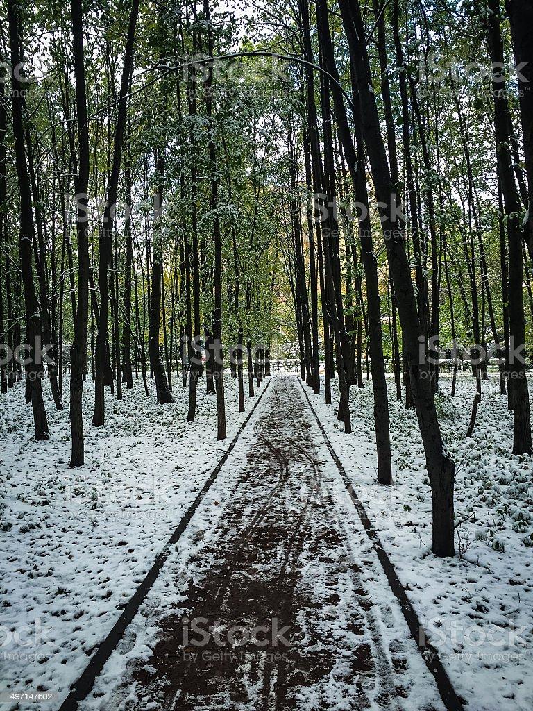 Snowy chemin de photo libre de droits
