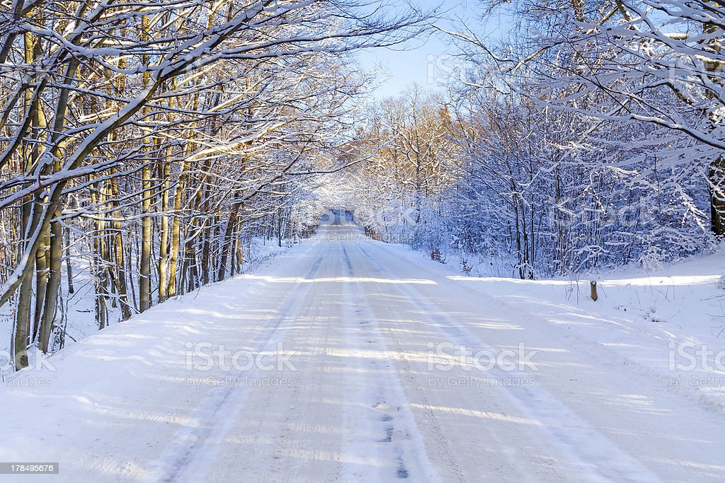 Snowy road in winter forest royalty-free stock photo