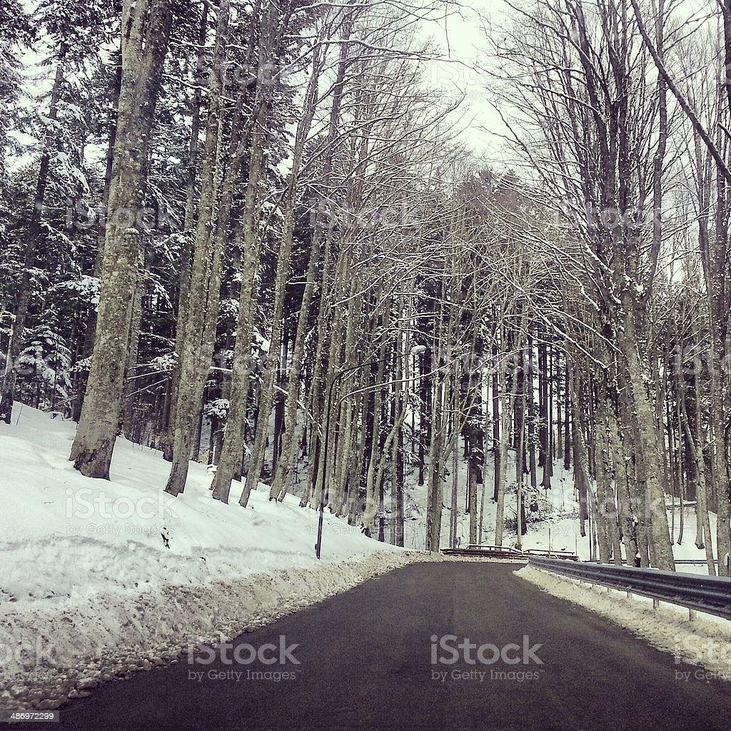 Snowy road - MobileStock stock photo