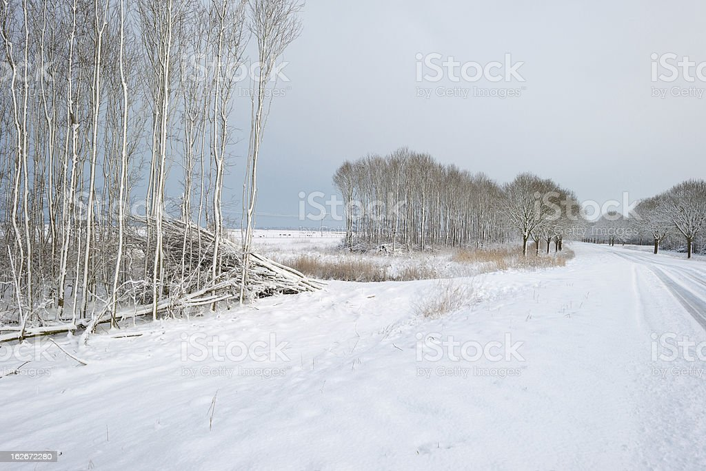 Snowy road through the countryside royalty-free stock photo