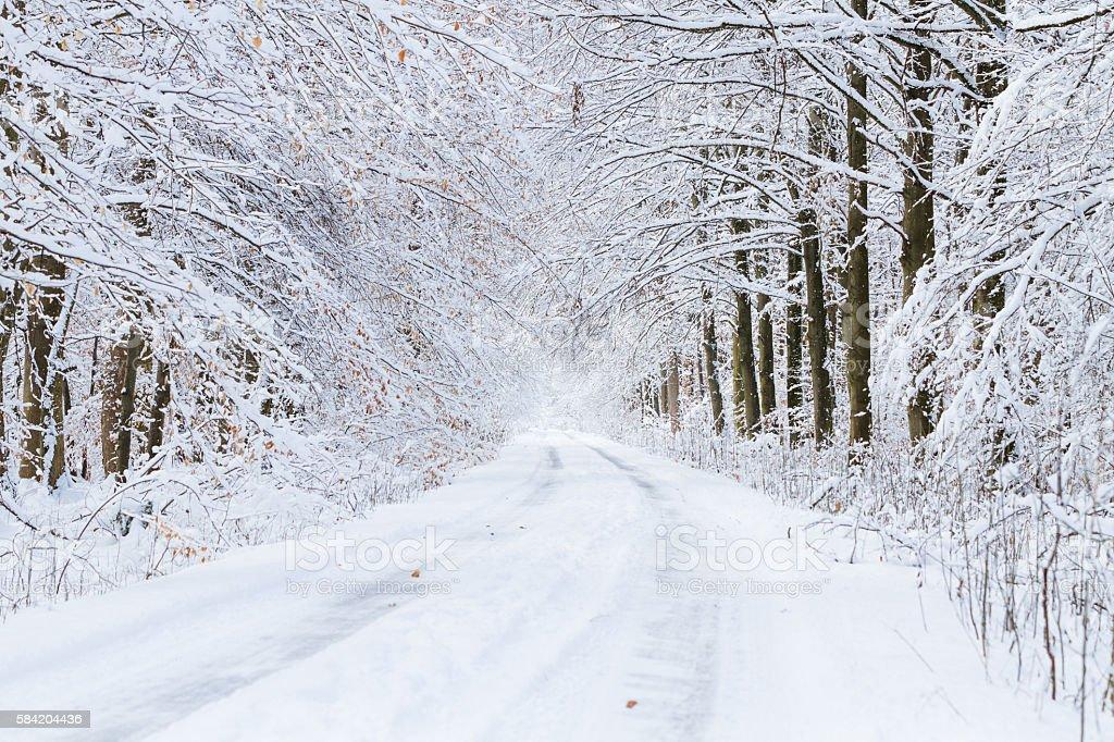snowy roads stock photo
