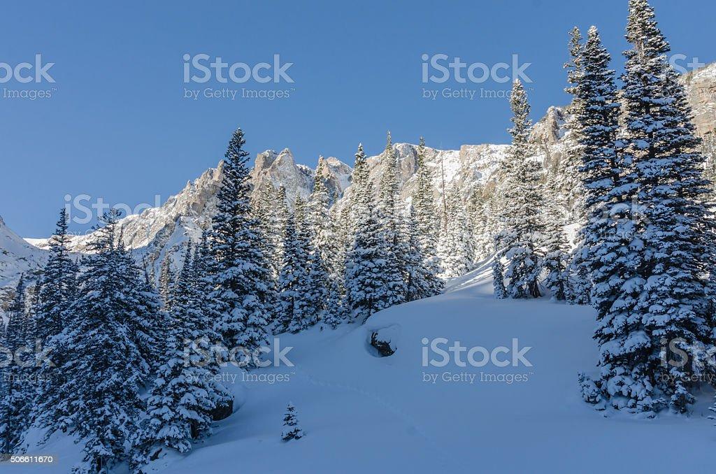Snowy scene in Colorado mountains stock photo