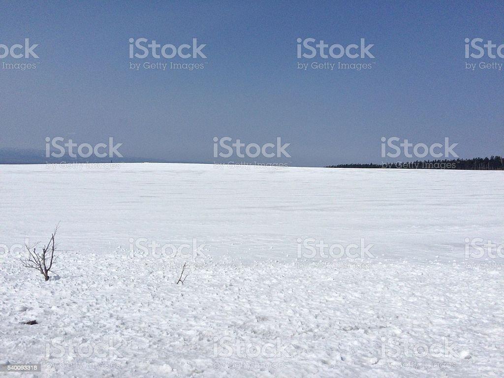 Neve paisagem de Hokkaido foto de stock royalty-free
