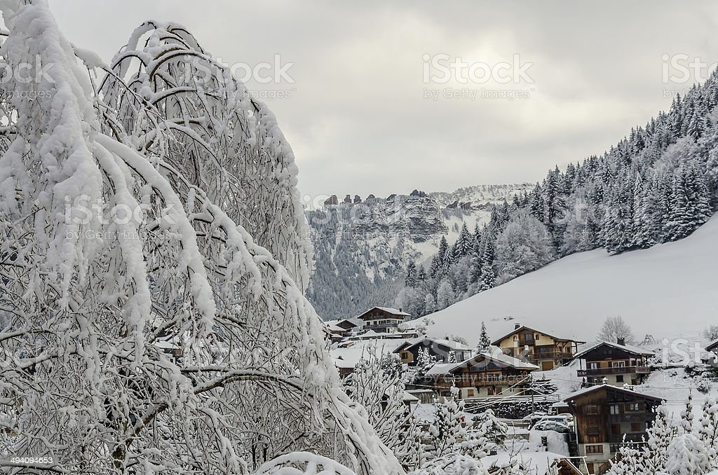 Snowy tree and Morzine vilage chalets stock photo
