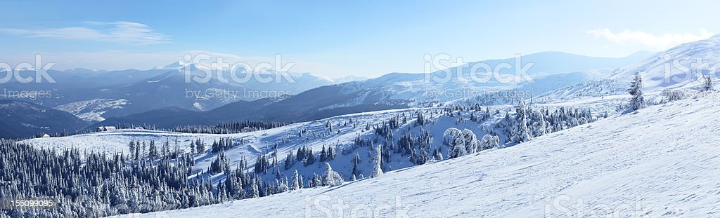 Snowy view in Carpathian Mountains royalty-free stock photo