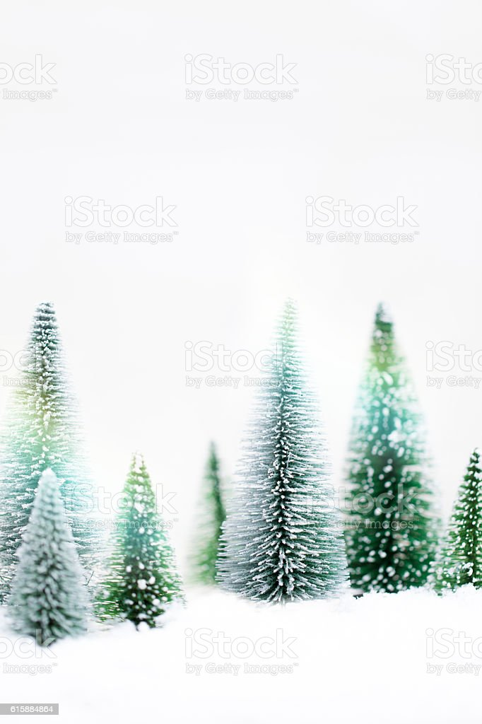 Snowy Winter Forest - Christmas Card stock photo