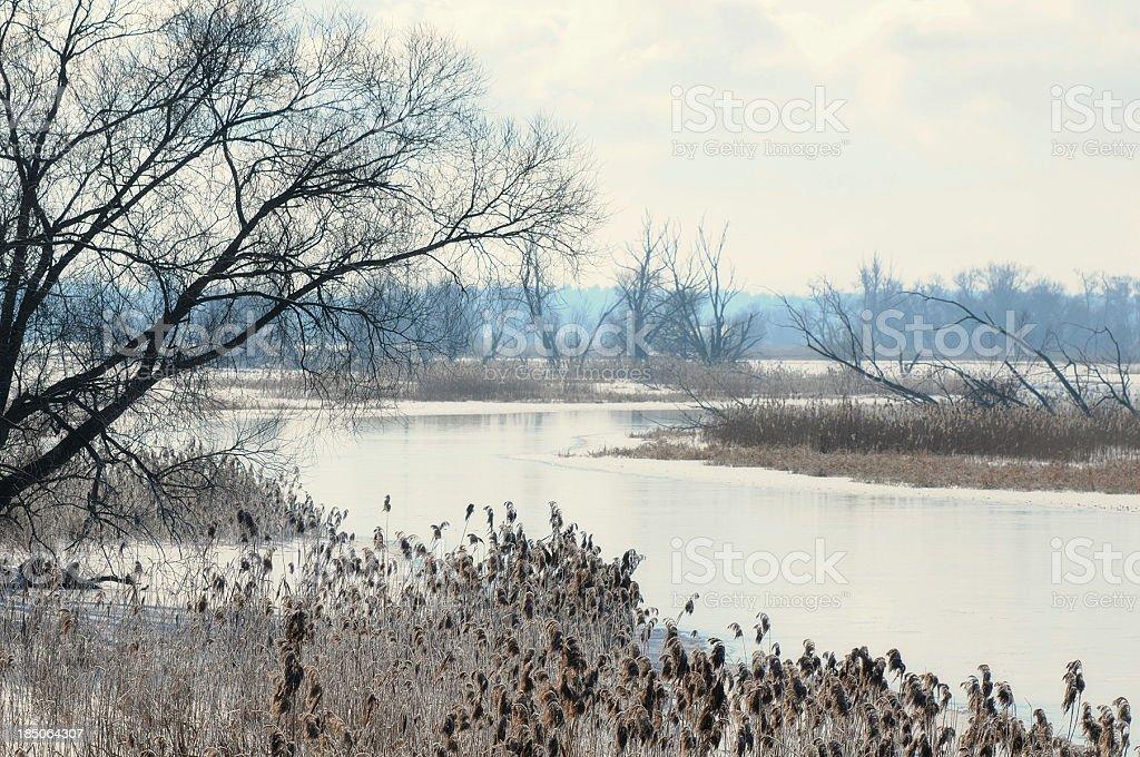 snowy winter landscape at Havel river (Brandenburg Germany) stock photo