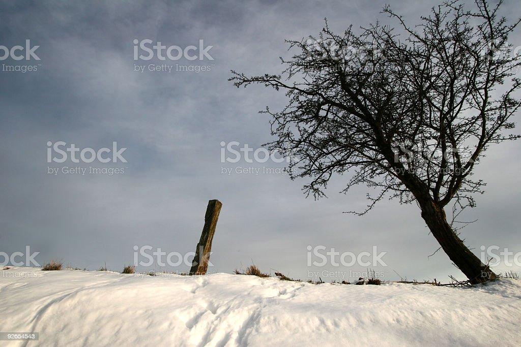 snowy winter landscape royalty-free stock photo