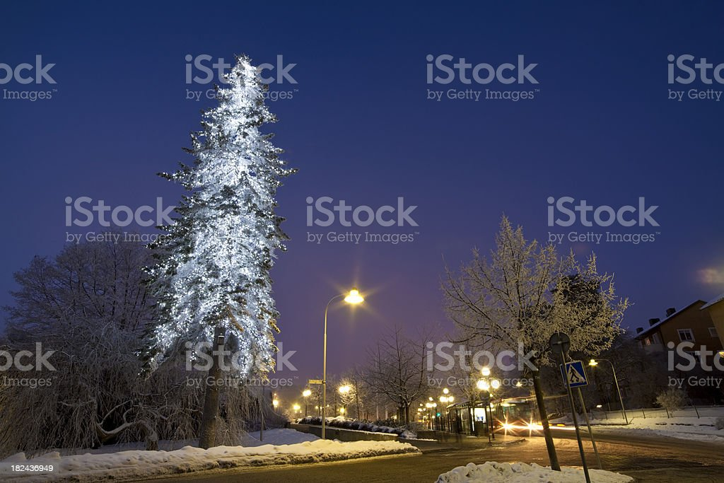 Snowy winter morning in Sweden at Christmas royalty-free stock photo