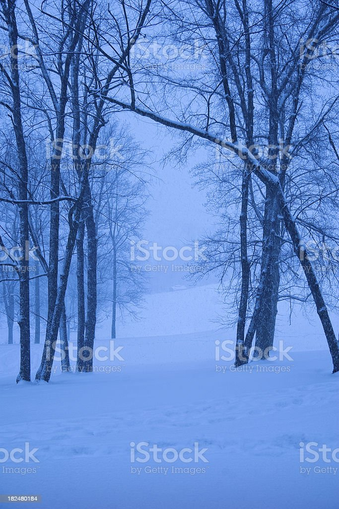 Snowy Winter Passage stock photo