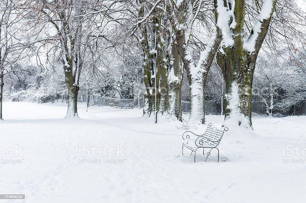 Snowy Winter Scene In A Public Park royalty-free stock photo