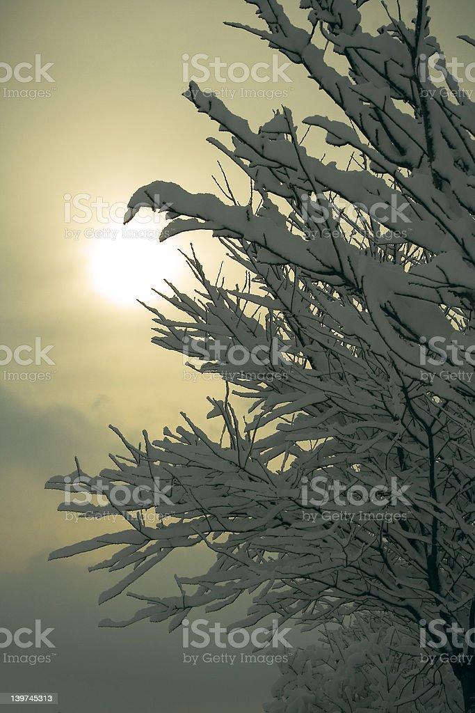 snowy world royalty-free stock photo