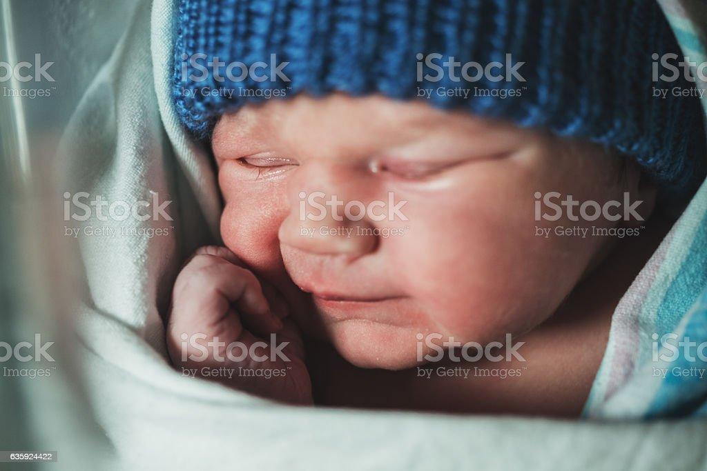 Snuggled Newborn stock photo
