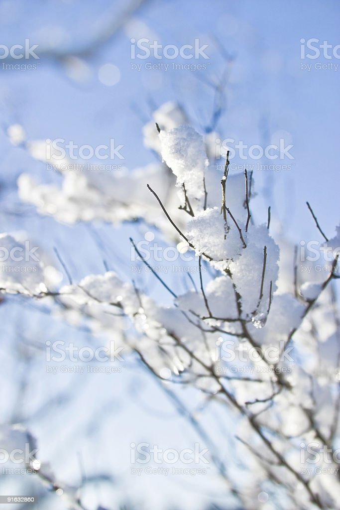 So cold royalty-free stock photo
