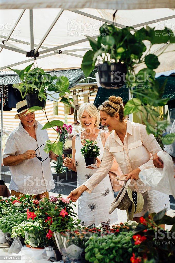 So many lovely plants to buy! stock photo