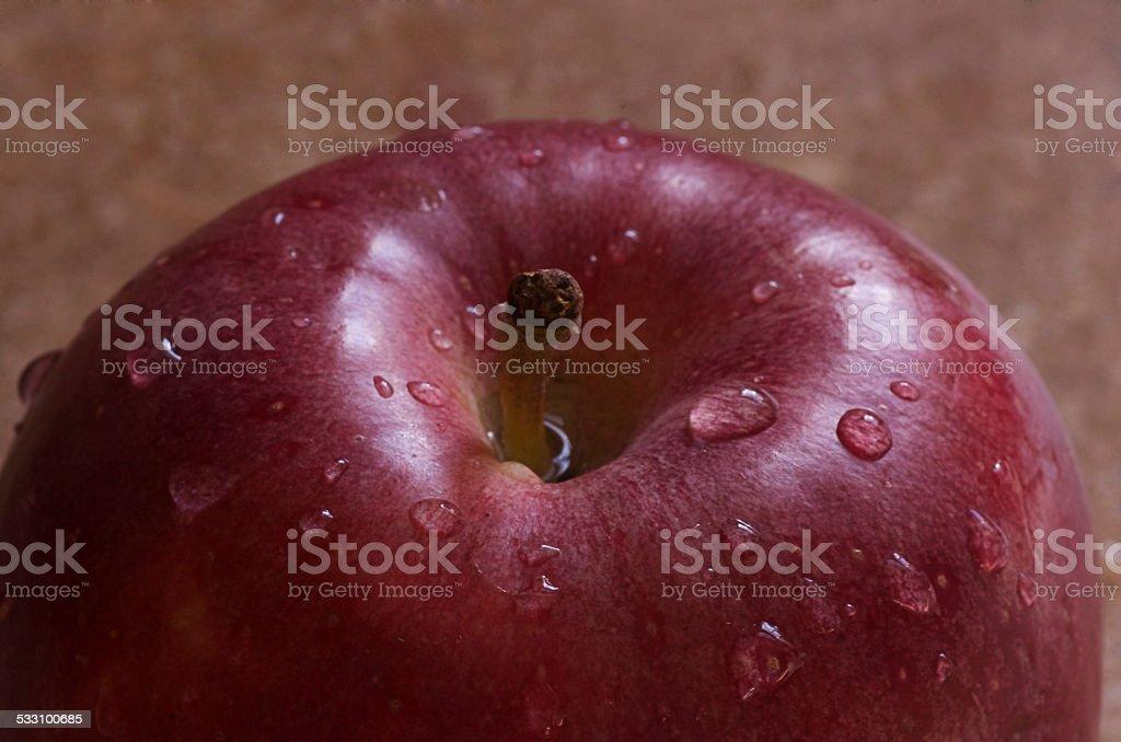 Soaked Apple 3 stock photo