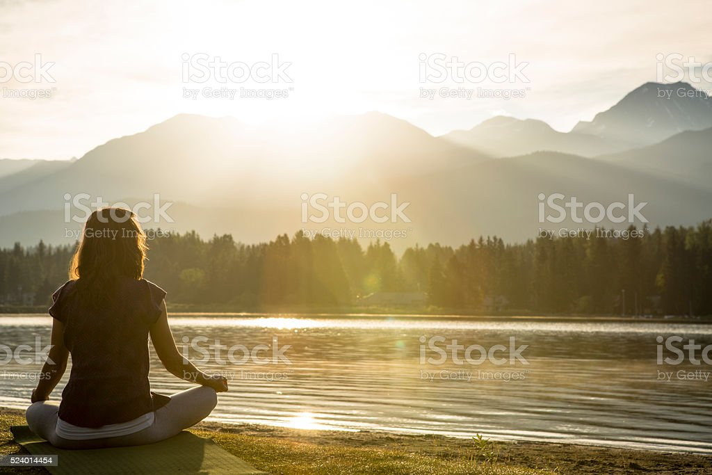 Soaking in energy in morning sun. stock photo