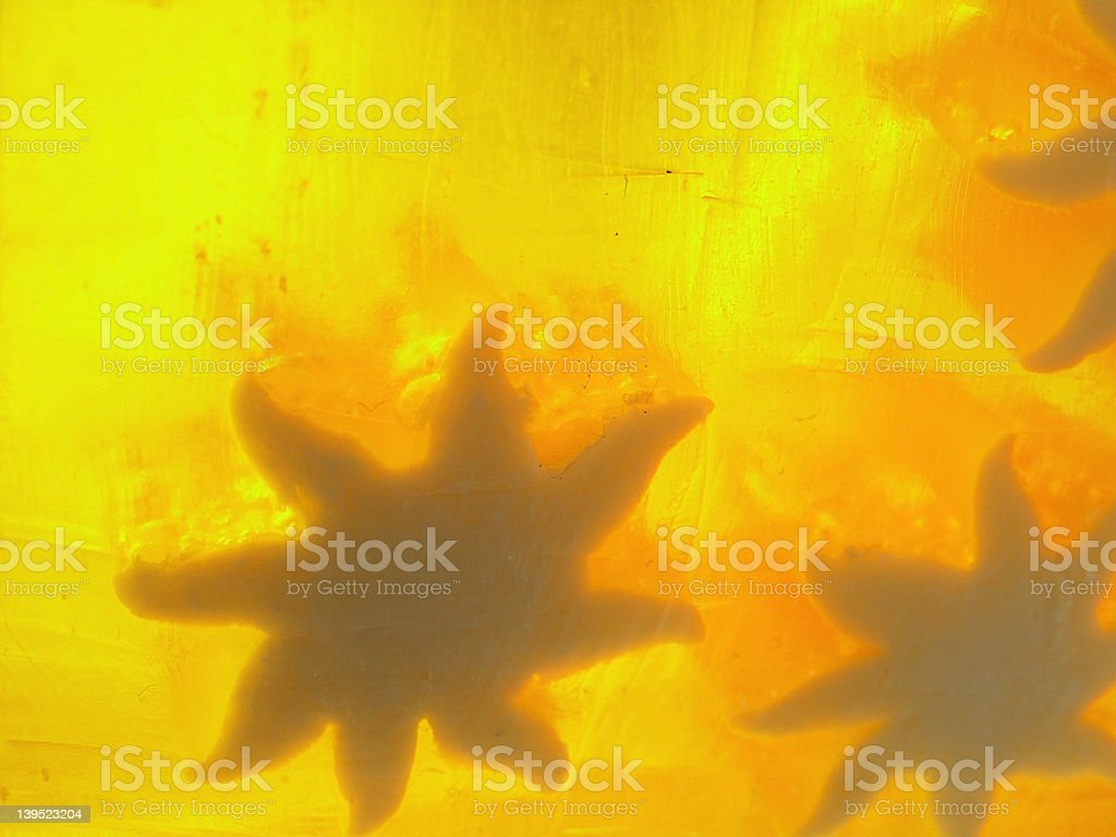 soap stock photo
