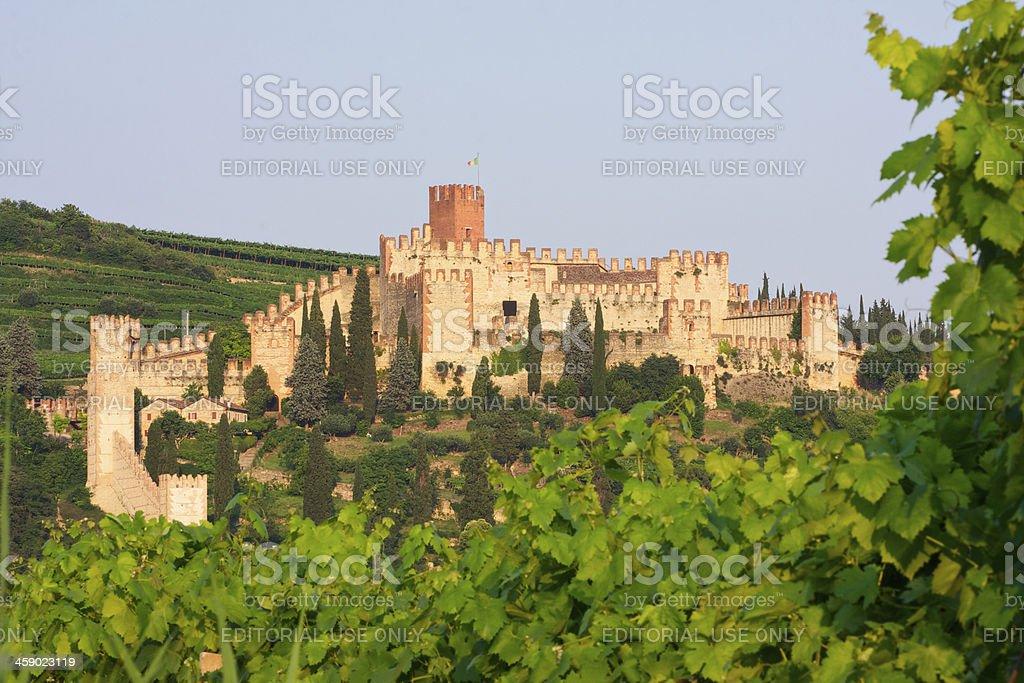 Soave Castle at sunset near to Verona (Italy) stock photo