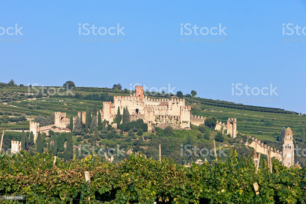 Soave Castle Through The Vineyards stock photo