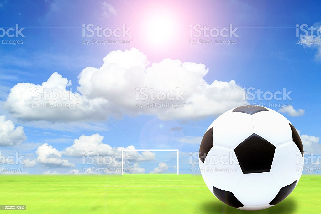 soccer ball in fresh green summer or spring field grass stock photo