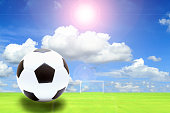 soccer ball in fresh green summer or spring field grass
