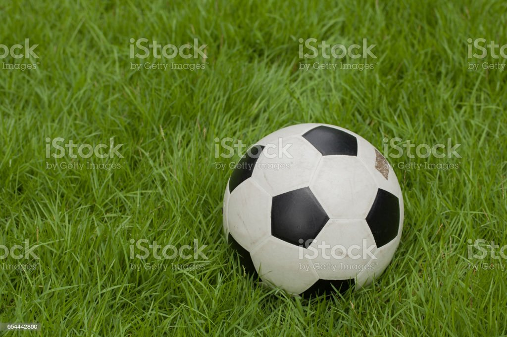 Soccer ball laying on the grass stock photo