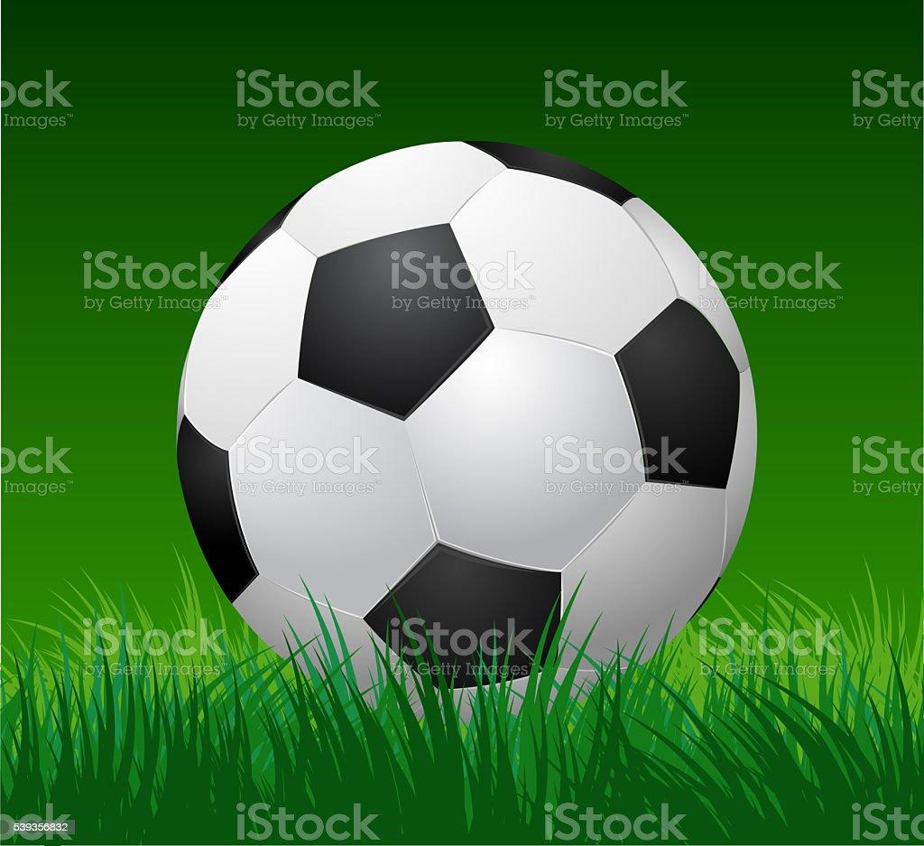 soccer ball on grass stock photo