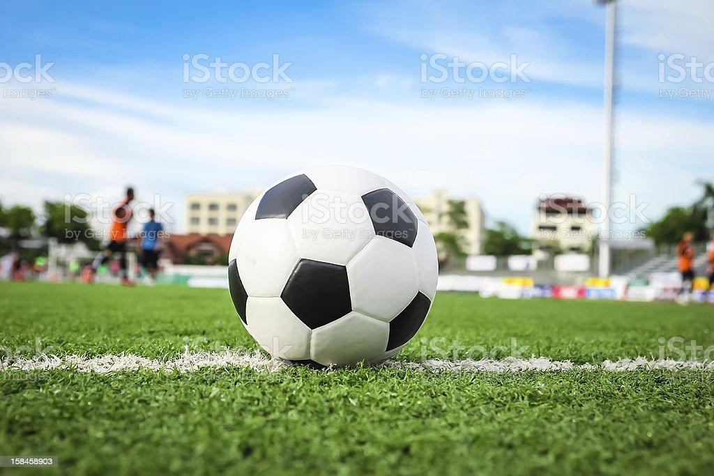 Pallone da calcio su erba verde foto stock royalty-free
