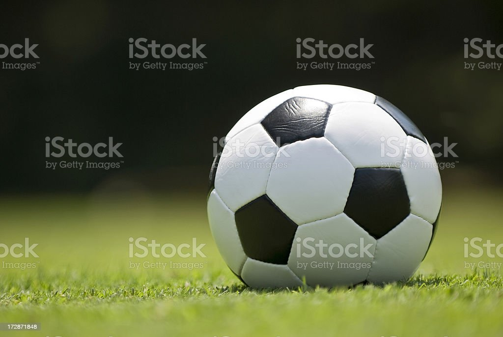 Soccer Ball (Football) on Green Grass royalty-free stock photo