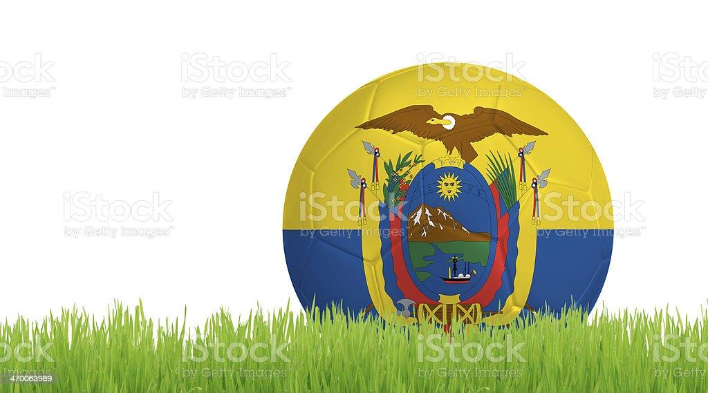Soccer ball on green grass with colors of Ecuadorian flag stock photo