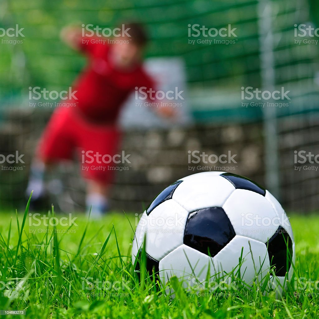 Soccer (football) ball on the green grass royalty-free stock photo