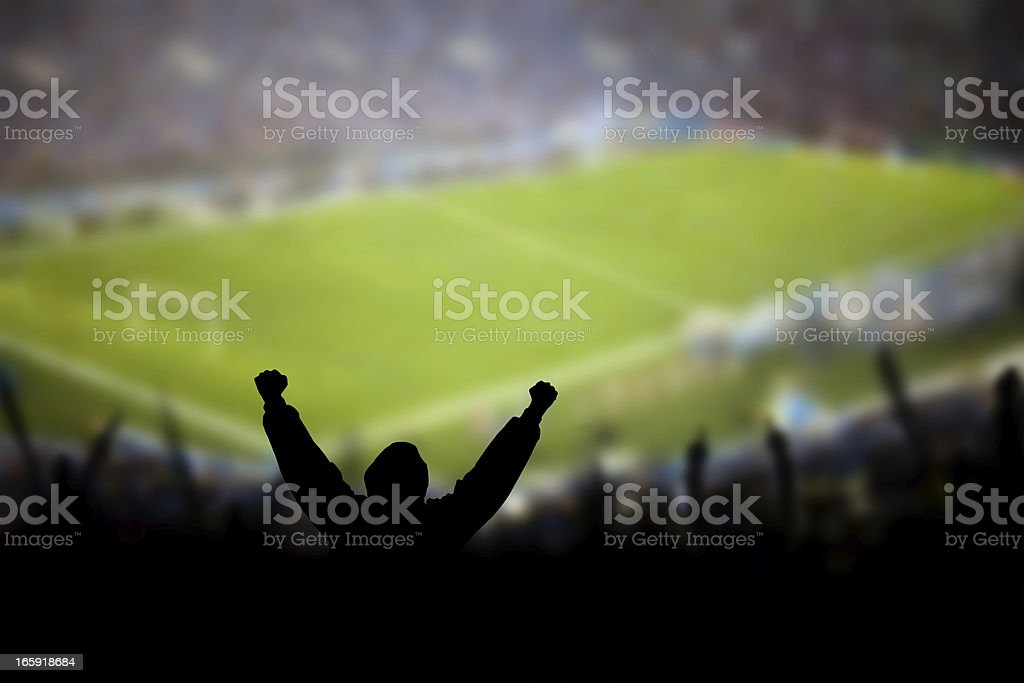Soccer Excitement royalty-free stock photo