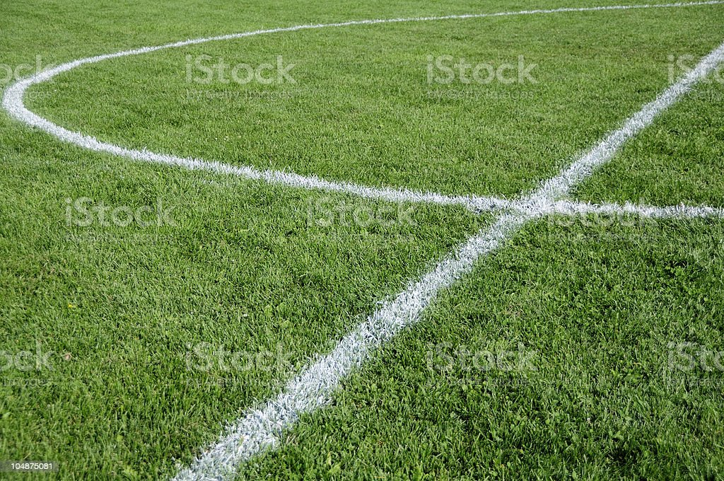 Soccer field close up with white lines royalty-free stock photo