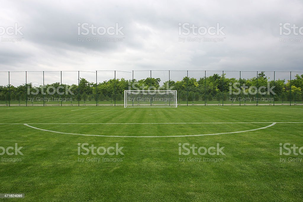 soccer field grass Goal royalty-free stock photo