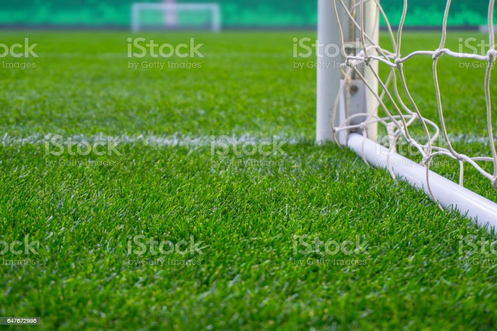 Soccer field with green grass. Football goal on stadium arena