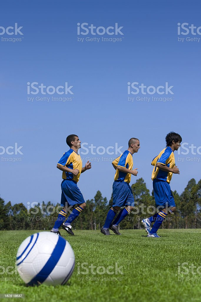 Soccer Team Warm-Up royalty-free stock photo